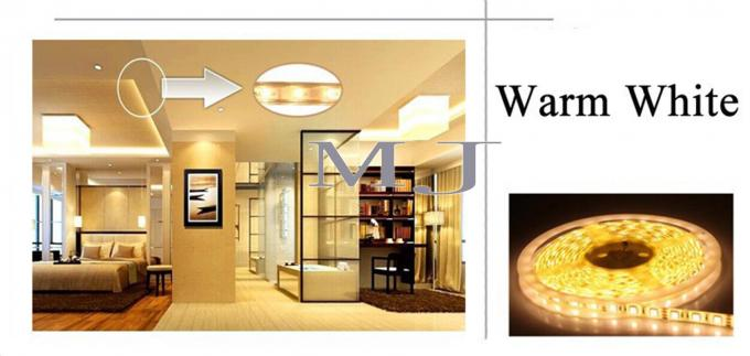 LED Flexible light decoraiton light
