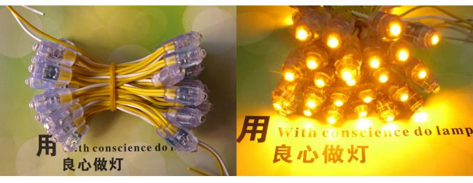 Customized led pixel light