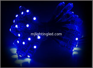 China Blue pixel Lighting led Night Lights 5V Wedding Christmas Lights LED Pixel Module Outdoor Twinkle Christmas Decoration supplier