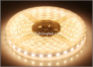 China LED strip flexible light 3528SMD White LED strips DC12V LED String waterproof IP65 decorative light supplier