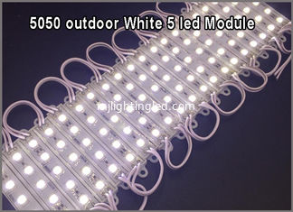 China 5050 led module light 5chip white modules LED channel letters supplier