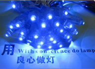 China 9mm Led Exposed Light String 5V Blue LED Light 50pcs/string for Shop Billboard Decoration factory