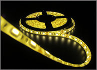 China 5050SMD LED String light 12V LED light 60led/meters yellow led tape decorative light factory