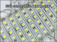 Super Bright 5050 LED Module SMD 6LEDS Light Waterproof 12V DC Store Club Bar front window sign decor -White