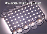 China 5050 modules 12V LED Pixel module string 20PCS LED decoration lights factory