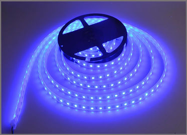 China Blue strips light 12V LED lamp tape string light 60led/m Building decoration distributor